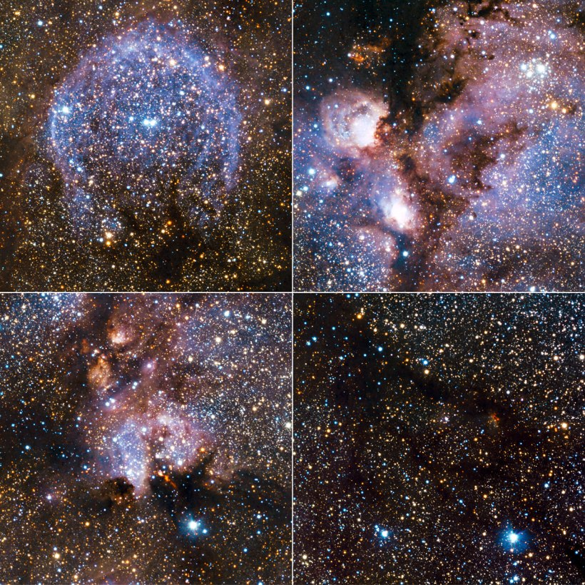 Highlights from the infrared view of the Cat's Paw Nebula (NGC 6334) taken by VISTA. NGC 6334 is a vast region of star formation about 5500 light-years from Earth in the constellation of Scorpius. The whole gas cloud is about 50 light-years across. NGC 6334 is one of the most active nurseries of young massive stars in our galaxy, some nearly ten times the mass of our Sun and most born in the last few million years.